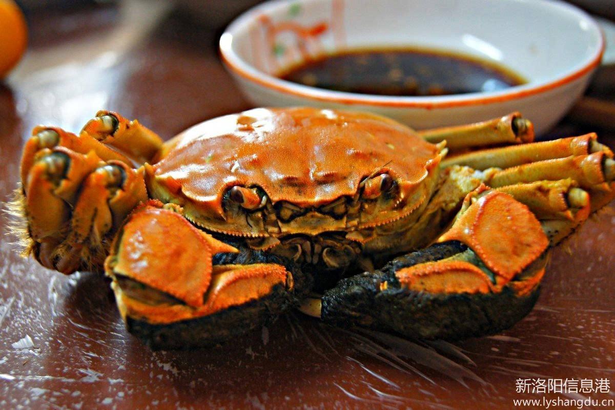【秋天记忆】带着螃蟹回老家