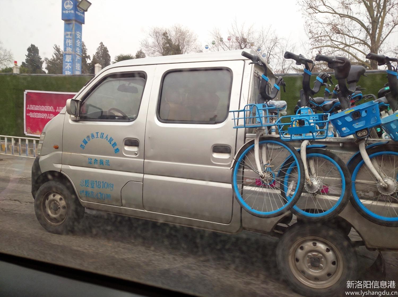洛阳是不是在取缔共享单车