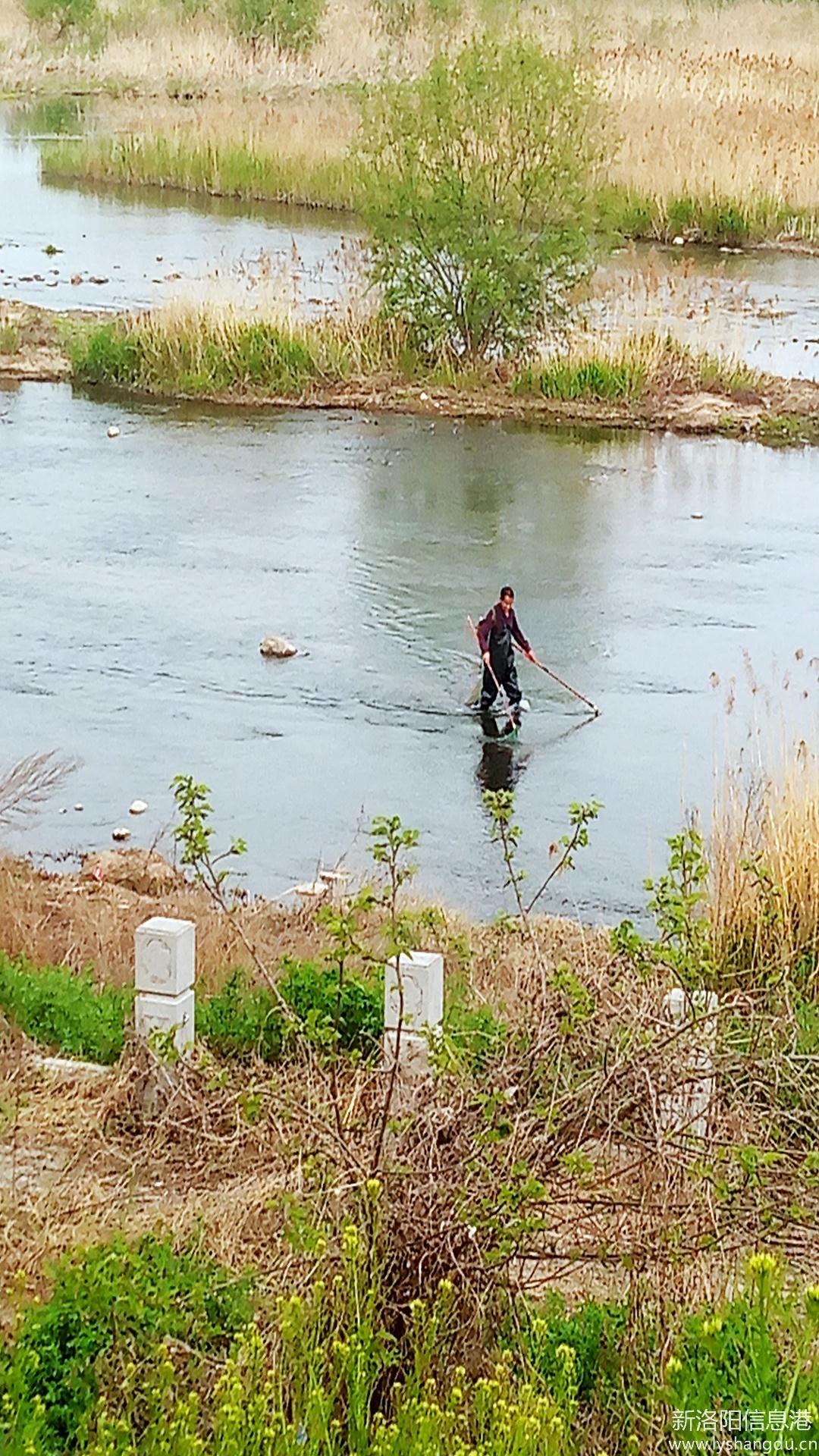 伊川河道管理处疫情过后电打鱼又开始了