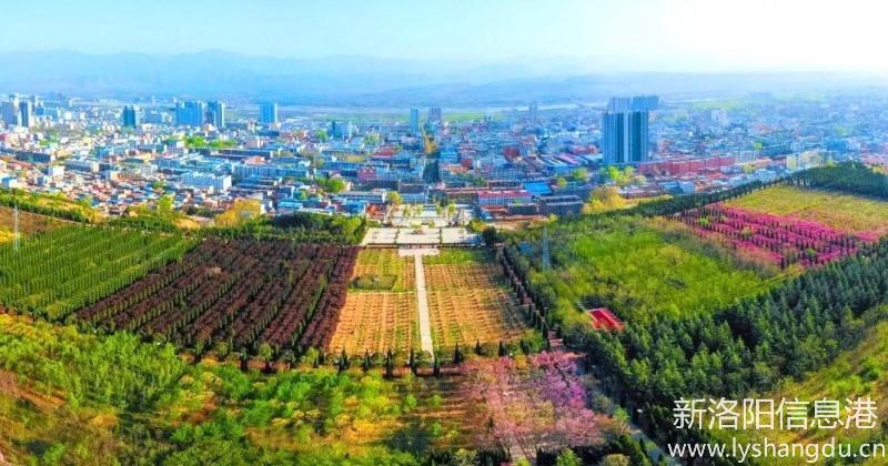 洛宁王嘉飞:讲好洛宁故事之饮食文化篇——洛宁杂菜汤